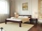 Ліжко Соня Лев 4