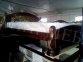 Ліжко Женева Преміум 12